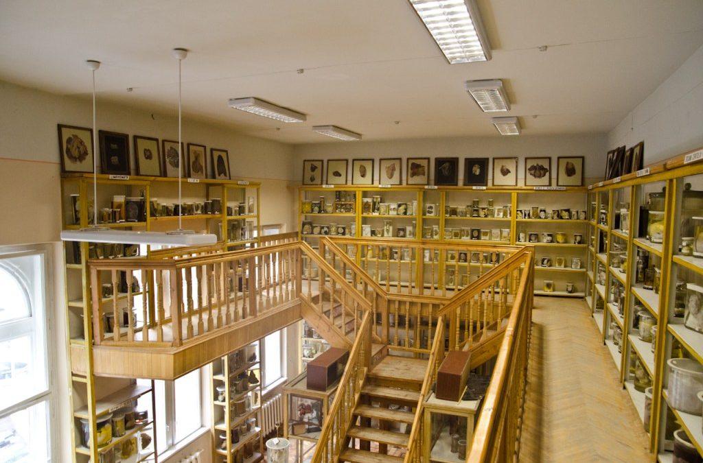Студенти фармацевтичного факультету відвідали Музей хвороб людини
